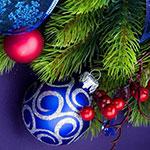 DPT-Weihnachtsgrüße